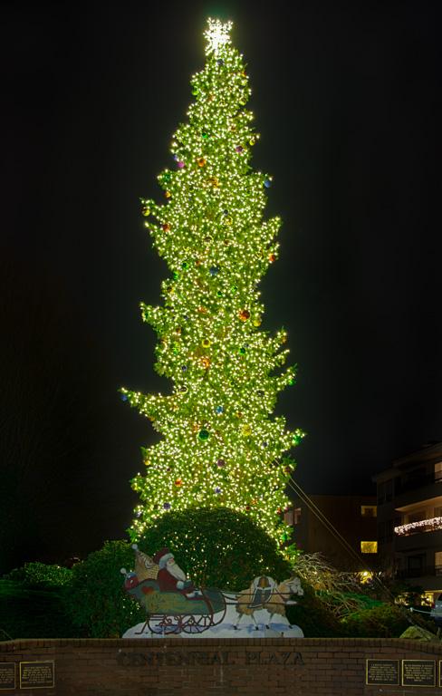 Edmonds Christmas Tree 2013, Edmonds, WA