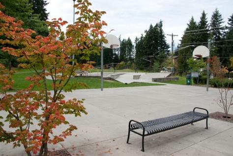 Lynndale Skate Park sport court & skateboard area